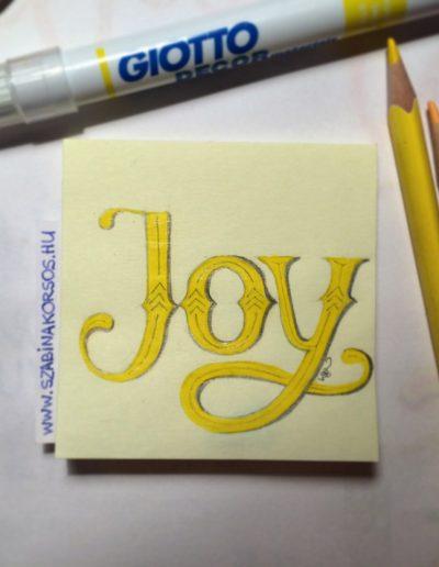 04 - Joy